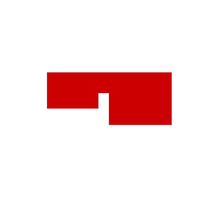 Longo AG